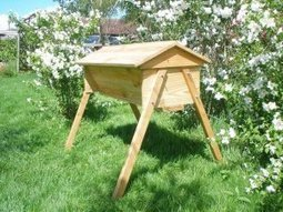 Natural Beekeeping Forum - View topic - neighbourhood walkabout | environmental matters, self sufficiency and health | Scoop.it