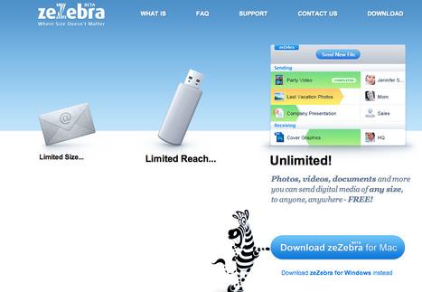 www.zezebra.com | zeZebra - Where size doesn't matter! | KgTechnology | Scoop.it