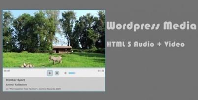 20 Plugins pour Gérer vos Fichiers avec WordPress   tous les CMS   Scoop.it