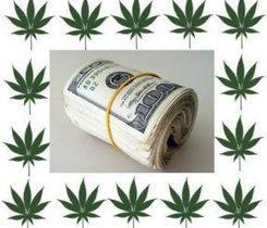 Banking Gets Easier For Legal Marijuana Businesses | The legalization of marijuana | Scoop.it