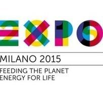 Expo 2015 : la chaîne officielle sur Youtube | Expo Milano 2015 | Scoop.it