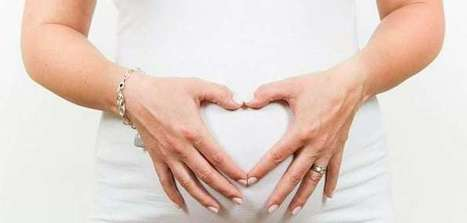 Fetal Development - Month By Month Guide   GoMama 24/7   Fashion Trend   Scoop.it