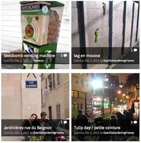 Seedbomb, le tableau de chasse de la nature en ville | Urbanisme vivant | Scoop.it
