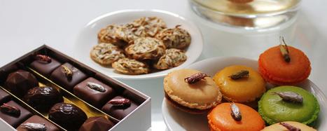 Pluris Magazine Entomophagie macarons grillons l'Aphrodite Nice | Gastronomie Française 2.0 | Scoop.it