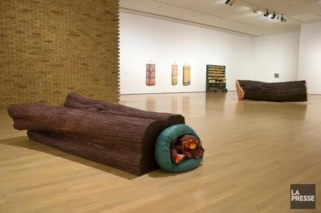 Liz Magor et Lizzie Fitch & Ryan Trecartin au MAC: un monde dénaturé | Mario Cloutier | Arts visuels | art move | Scoop.it