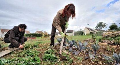 Bientôt des jardins partagés dans les quartiers d'Auxerre ? | Jardins partagés de là-bas et au-delà - Community gardens from the world | Scoop.it