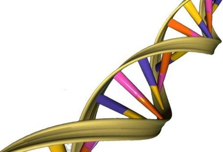 What if Big Data is Too Big? A Radical Solution May Be in DNA - Forbes | Cloud Central | Scoop.it