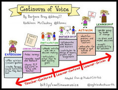 Personalize Learning: Continuum of Voice: What it Means for the Learner | Higher education | Scoop.it