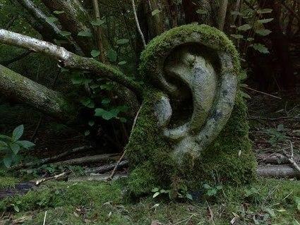 El sonido que habito | RIATE | Scoop.it