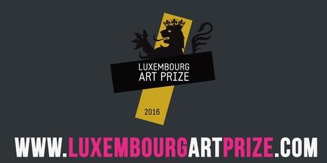 Luxembourg Art Prize - 25.000€ // deadline 30.06.2016 | Digital #MediaArt(s) Numérique(s) | Scoop.it