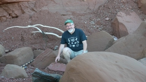 200-million-year-old, 3-toed dinosaur footprint fossil found in N.S. | NovaScotia News | Scoop.it