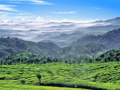 Le Sri Lanka lance une nouvelle campagne pour attirer les touristes ! | E-tourisme & marketing territorial | Scoop.it