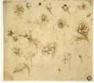 5 Sketching Secrets of Leonardo Da Vinci | Around the Web - Inspiration and Creativity | Scoop.it
