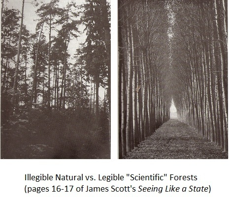 A Big Little Idea Called Legibility | Farming, Forests, Water, Fishing and Environment | Scoop.it