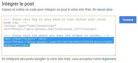 Pourquoi et comment intégrer un message publié sur GooglePlus ou Facebook dans votre site ou blog [Astuce du jour] | Le Relais | Scoop.it