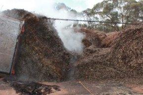 Family preserves eucalyptus distillery   Australian Plants on the Web   Scoop.it