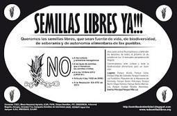SEMILLAS DE IDENTIDAD: Santa María de Pantasma, Nicaragua. Territorio Libre de Transgénicos   Semillas Criollas en Nicaragua   Scoop.it