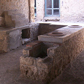 Giraffe Was on Menu in Pompeii Restaurants : DNews | Teaching history and archaeology to kids | Scoop.it