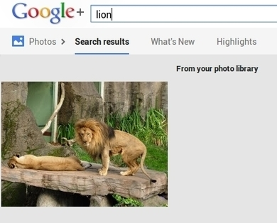 Searchable Video is Coming, Because Google+ Image Search - Forbes | Google+ tips and strategies | Scoop.it