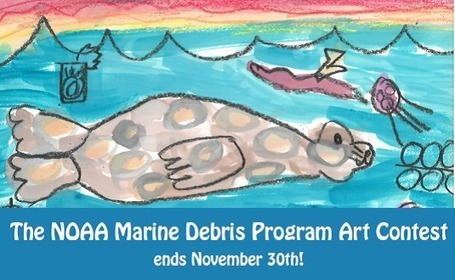 Don't Forget! The NOAA Marine Debris Program Art Contest Ends November 30th! | Marine Litter | Scoop.it