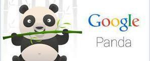 Has your website been hit by Google Panda?   Soft System Solution   Scoop.it