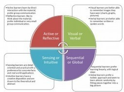 Learning Styles, Mindsets, and Adaptive Strategies | Learning Organizations | Scoop.it