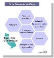 La résilience, un outil pour les territoires ? | Developpement Economique Durable | Scoop.it