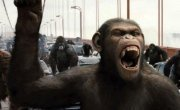 Updates On New 'Planet of the Apes' Film | Movies! Movies! Movies! | Scoop.it