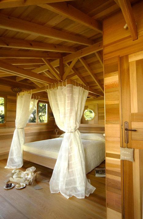 Une cabane nichée dans un arbre | Construire sa maison avec un architecte | Scoop.it