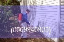 شركة مكافحة الحشرات بالرياض(0509945905)   شركة تنظيف بالرياض(0509945905)شركة اركان   Scoop.it
