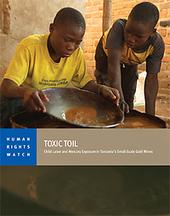 Toxic Toil: Child Labor and Mercury Exposure in Tanzania's Small-Scale Gold Mines | Fair Trade Choco-locate | Scoop.it