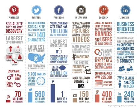 A brief summary of Social Networks today - Netbooster | Digital Marketing | Scoop.it