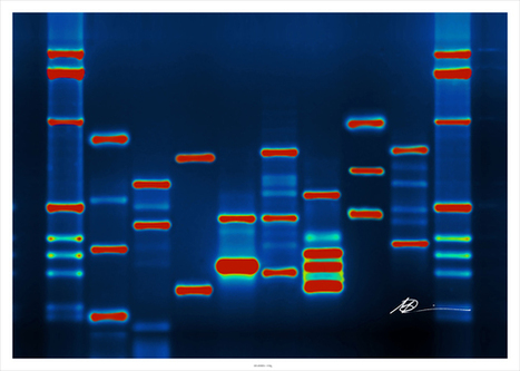 Microsoft is buying tiny strands of DNA to store big data | STEM | Scoop.it