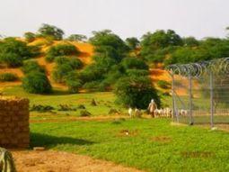 Niger : Trois actions pour améliorer la vie - Afriquinfos.com | Cartes libres et médiation numérique | Scoop.it