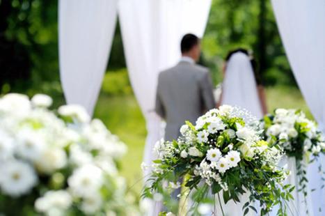 Benjamin Landa FlOWERS !Steps to Choose Flowers on Wedding Day   Benjamin Landa   Scoop.it