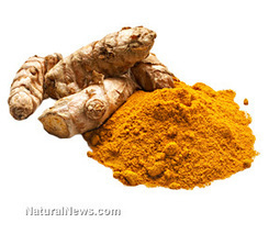 Curcumin supplementation is shown to halt the progression of ... | Herbs and spices | Scoop.it