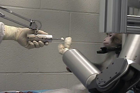 For Future of Mind Control, Robot-Monkey Trials Are Just a Start | Philosophy and Science of Mind and Brain | Scoop.it