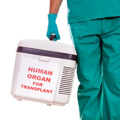 Insides Trading: What Impact Will Facebook Have on Organ Donations?: Scientific American | Creative Science 2.0 | Scoop.it