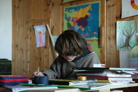 Di Tourette, scuola, home school e metodi di studio | Sindrome di Tourette e Dintorni | Scoop.it