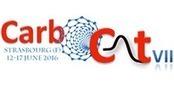 CARBOCAT VII - 12-17 June 2016 - Strasbourg | ECPM Strasbourg | Scoop.it