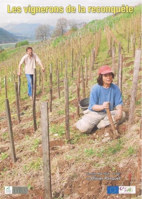 Les vignerons de la reconquête | Le Vin et + encore | Scoop.it