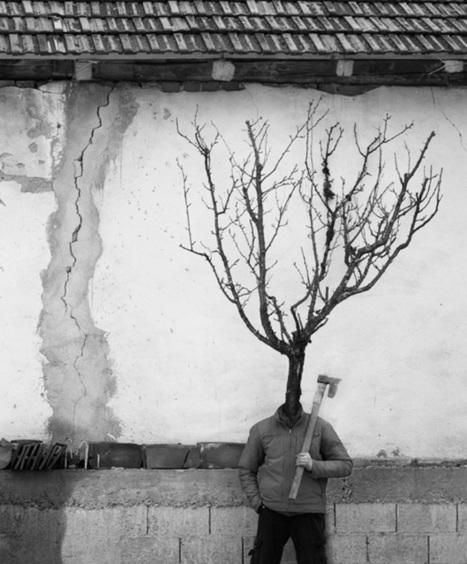 Tree People by Marko Prelic | Intelligence | Scoop.it