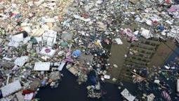 En 2050, les océans compteront plus de plastique que de poisson | Toxique, soyons vigilant ! | Scoop.it