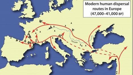 Fall of the Neanderthals: Volume of modern humans infiltrating Europe cited as critical factor   total nonsense, everything i like   Scoop.it