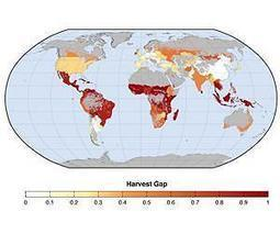 Increasing cropping frequency offers opportunity to boost food supply | Sustain Our Earth | Scoop.it