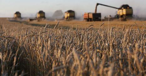 L'embargo russe, cauchemar et chance de l'agro-industrie française | Questions de développement ... | Scoop.it