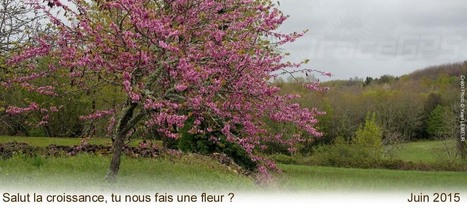Balades de printemps pas que pour les vieilles branches !!!! | Randonnees GPS | Scoop.it