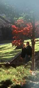 Lehigh University - UR News Story: 1103   Sports Ethics: TolesK   Scoop.it