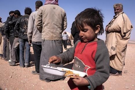 Crise ameaça sobrevivência de ONGs | Doe! | Scoop.it