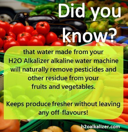 Ionized Akaline Water to Remove Pesticides From Your Produce | The Basic Life | Scoop.it